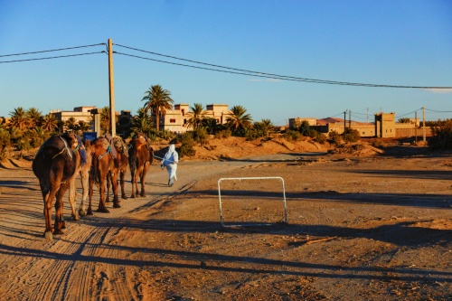 Maroccan Desert