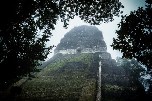 maya tikal pyramid -8