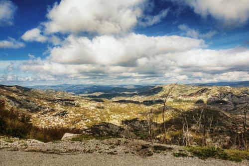 Monte Negro Landscape
